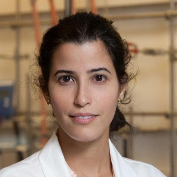 Dr. Ghada Al Mutairi